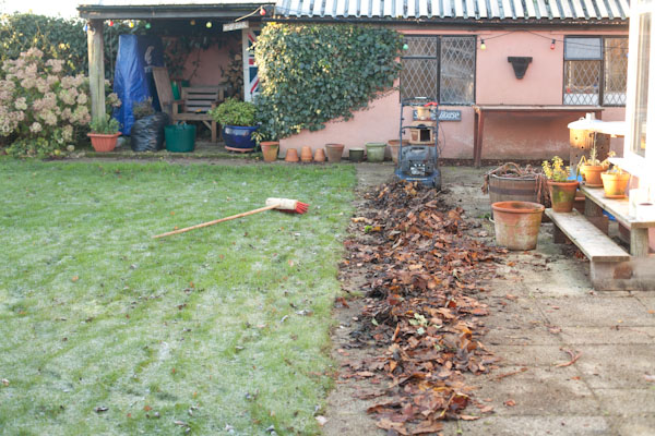 Speeding Up Leaf Mould